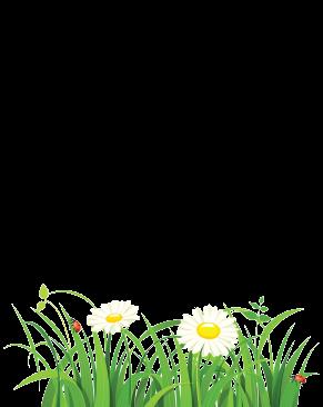 Феромони/ Атрактанти